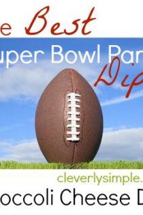Super Bowl Dip #5 : Broccoli Cheese Dip