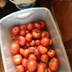 How to Can Tomatoes - Tomatoes