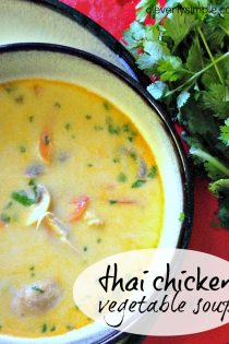Meal Planning on the Fly! : Thai Chicken Vegetable Soup