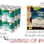 Buying Toilet Paper Online