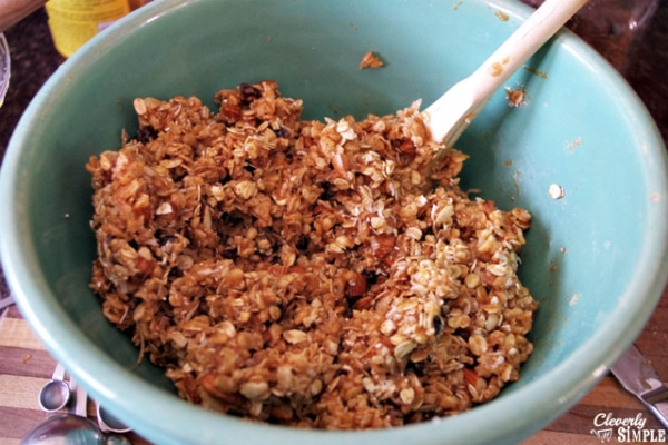Best Granola Bar Recipe