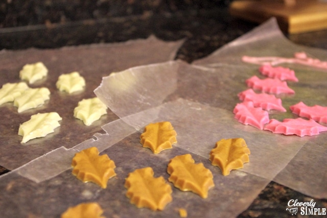 many colors of leaves for chocolate mold