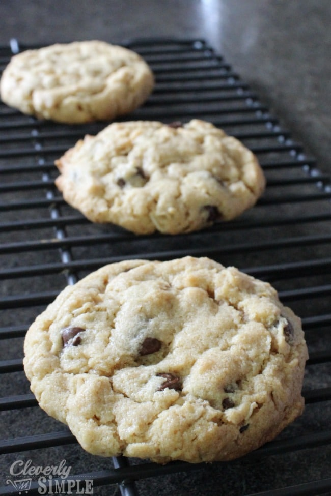 Baked Freezer Cooking Chocolate Chip Cookies Recipe