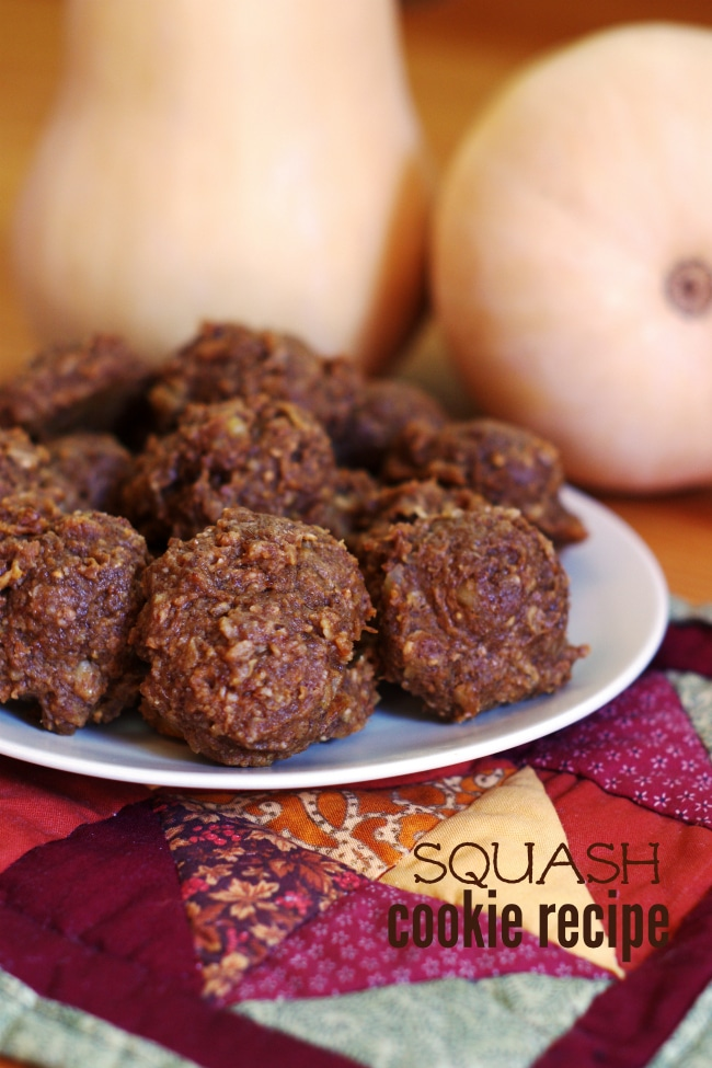 Squash Cookie Recipe