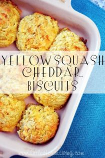 Using Your Garden Veggies : Yellow Squash Cheddar Biscuits