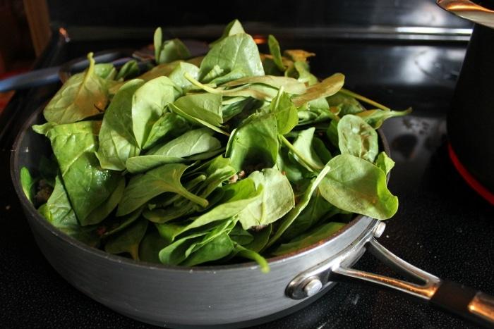 spinach in lasagna