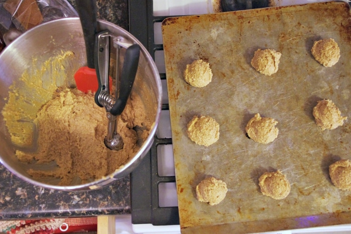 Making chewy maple cookies for Christmas