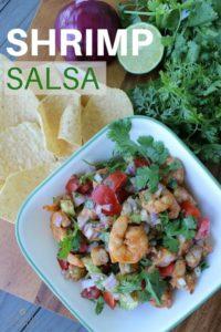 Easy Shrimp Salsa Recipe Dip with Avocado (1)