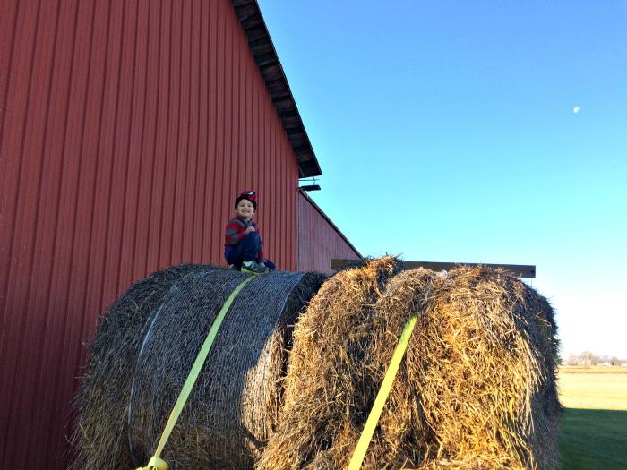 farmhouse-renovation-week-18-kids