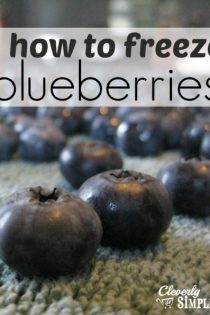 How to Easily Freeze Blueberries