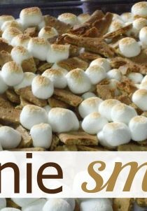 Pinned it & Tried It : Brownie Smores Recipe