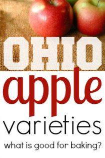 Ohio Apple Varieties : What is good for baking?