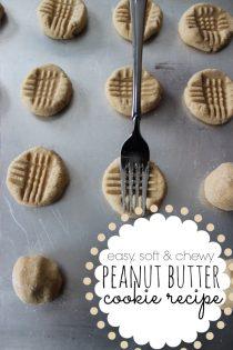 Soft Peanut Butter Cookie Recipe