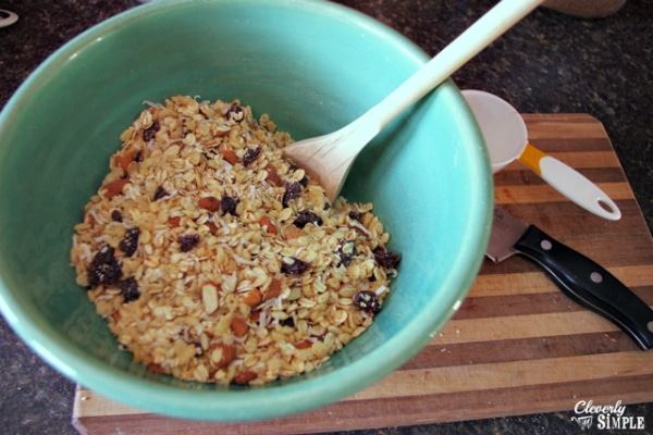 Healthy Granola Bar Recipe Dry Ingredients Mixed