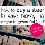 how to buy a steer to save money on organic grass fed beef