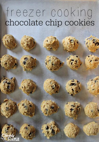 freezer cookies chocolate chip recipe