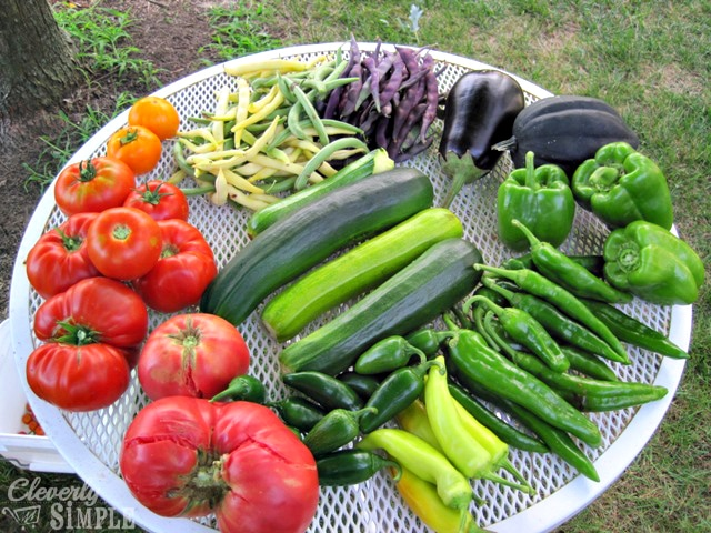 Vegetables for Canning