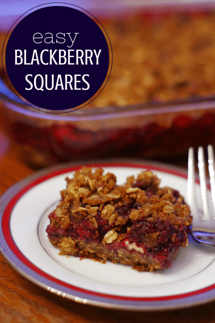 Easy Blackberry Squares Recipe