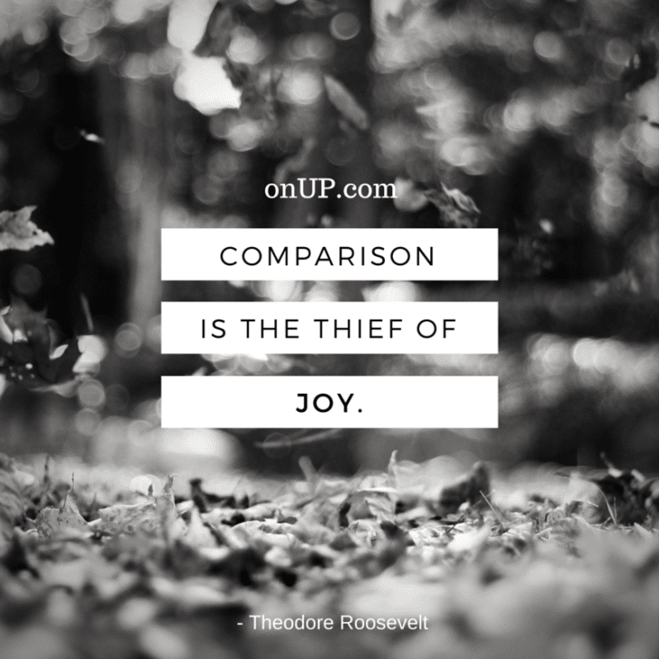 Thief of joy - roosevelt (1)