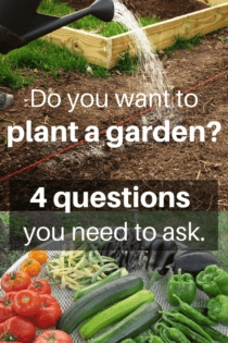 Four Questions To Ask Yourself Before Planting Your Garden