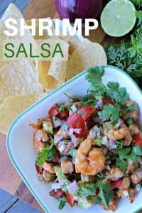 Easy Shrimp Salsa Recipe Dip with Avocado