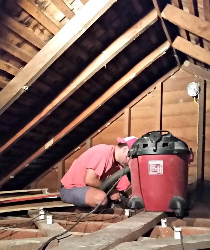 week 4 attic