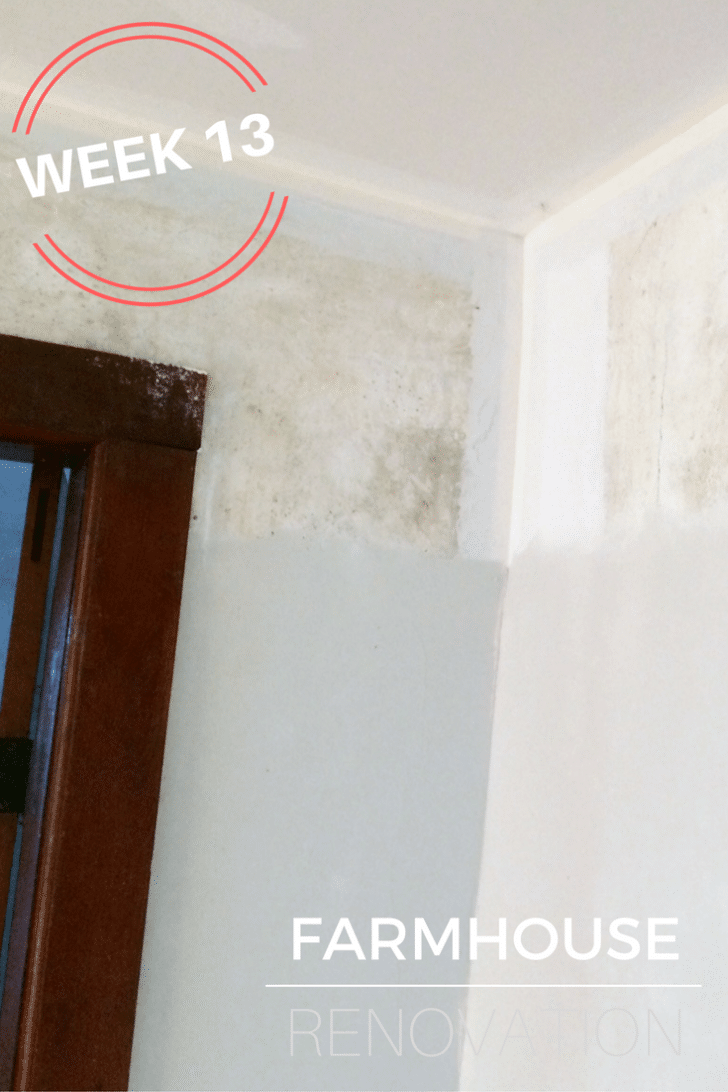 farmhouse-renovation-week-13-skimming-the-plaster