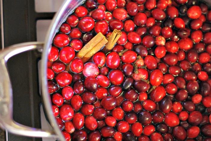 cranberry-tea-recipe-2