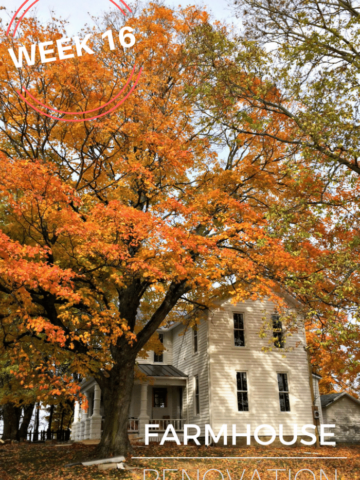 farmhouse-renovation-week-16-fall-kitchen-bathroom-floor-chimney