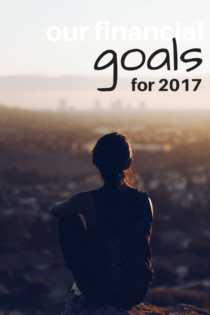 Our Financial Goals for 2017