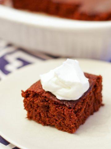 molasses cake on white plate