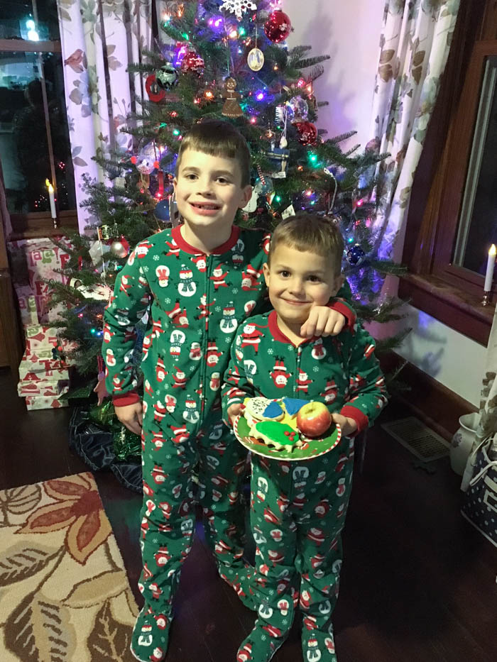 two boys with Santa cookies in front of Christmas tree