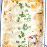 white sauce chicken enchiladas in baking pan