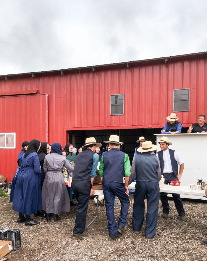 amish auction