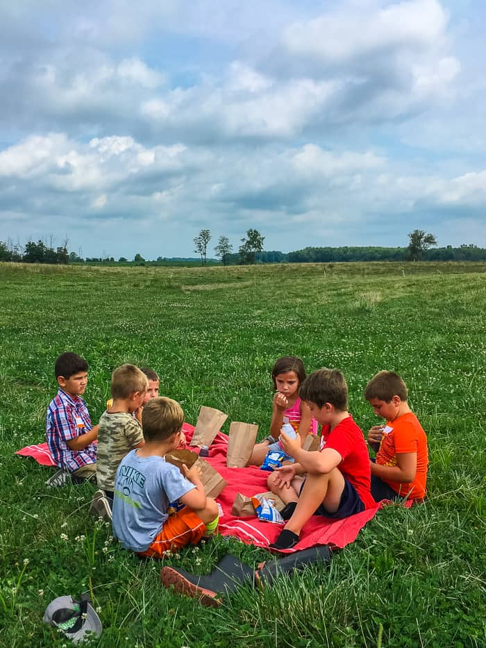 picnic in the pasture