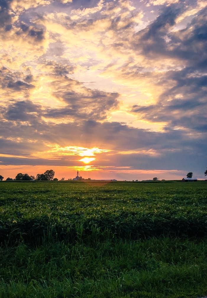 sunset on farm