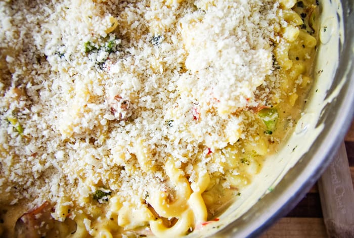panko bread crumbs on top of macaroni casserole