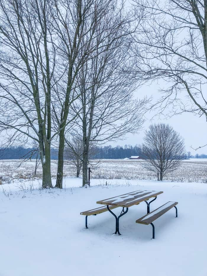 picnic table in snow
