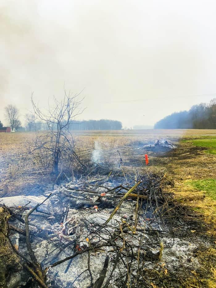 fence line burned
