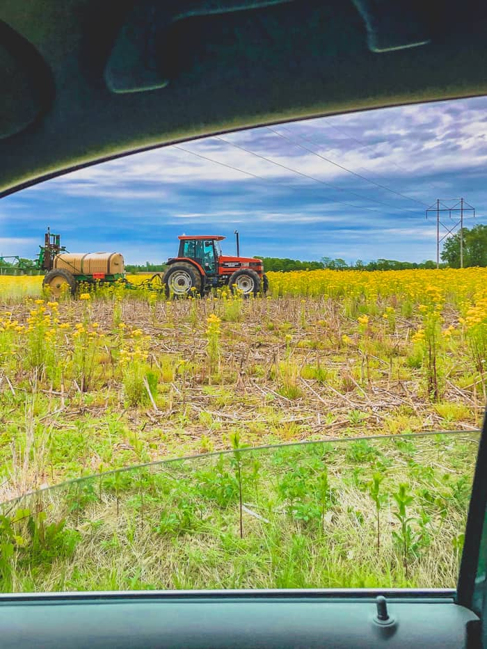farmer spraying weeds in field