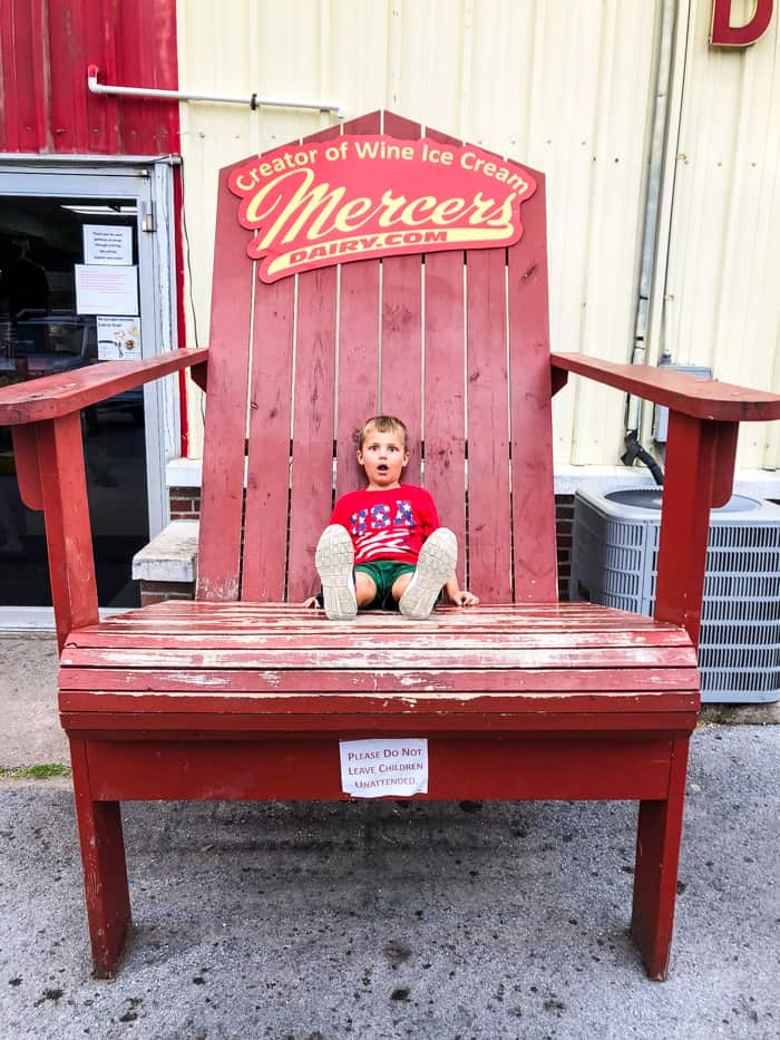 mercer's dairy chair