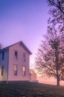 foggy morning at farmhouse