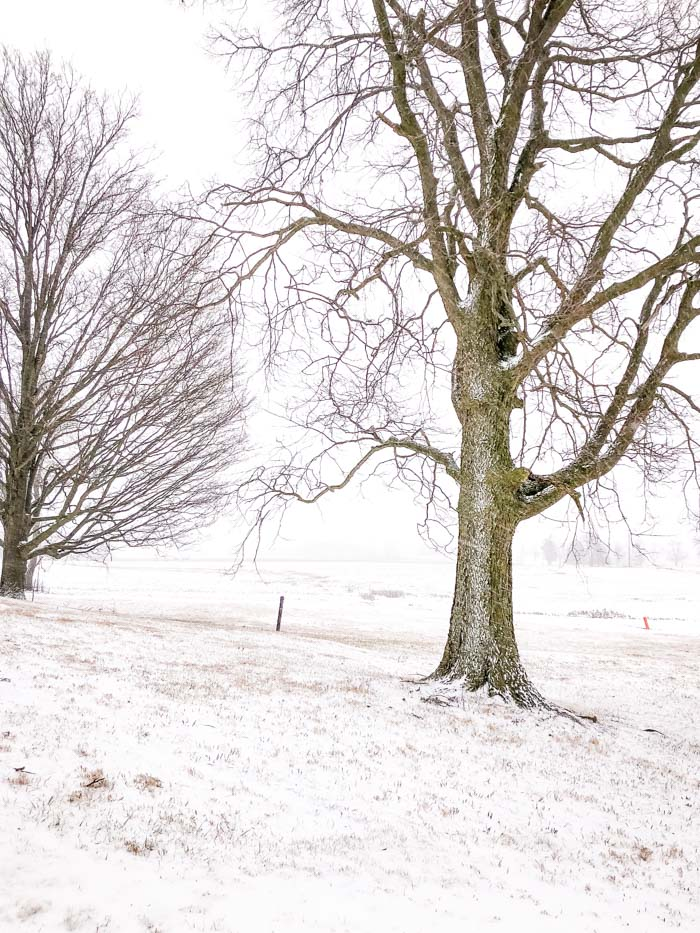 snow with farm field