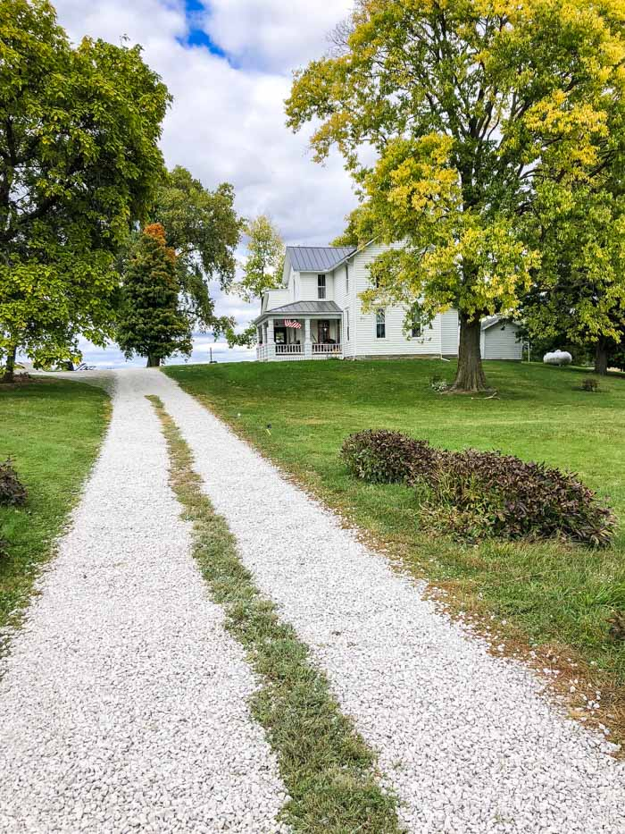 driveway with grass