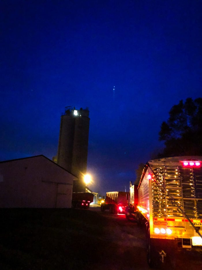 line at harvest grannery