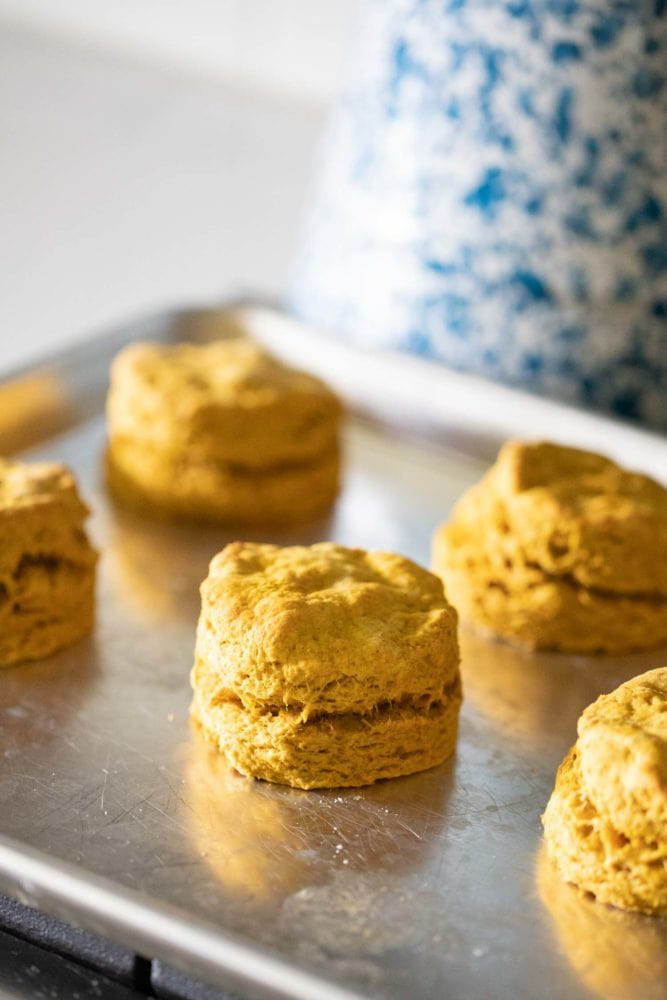 baked pumpkin biscuits cooling on stove