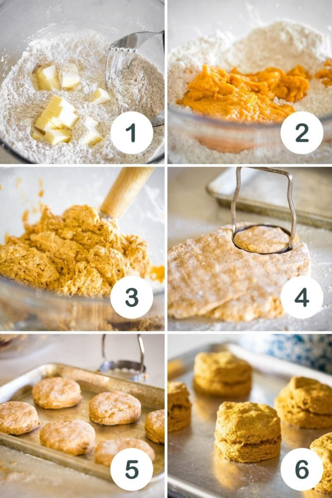 how to make pumpkin biscuits in 6 steps